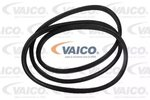Seal, boot-/cargo area lid VAICO V30-1567